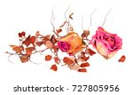 Dry Delicate Rose Flowers And...