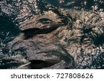 encounter with long finned... | Shutterstock . vector #727808626