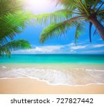 palm and tropical beach | Shutterstock . vector #727827442