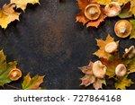 autumn background with autumn... | Shutterstock . vector #727864168