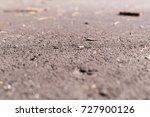 asphalt at summer with sticks.... | Shutterstock . vector #727900126
