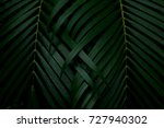 green leaves background.green... | Shutterstock . vector #727940302