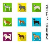 sheepdog  dachshund  bernard ... | Shutterstock .eps vector #727964266
