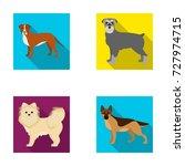 retriever  terrier  pomeranian  ... | Shutterstock .eps vector #727974715