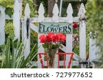 Stock photo roses and white picket fence with fresh flowers sign in backyard garden 727977652