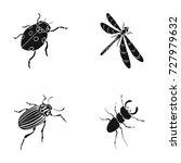 arthropods insect ladybird ...   Shutterstock .eps vector #727979632