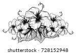 hibiscus flowers in vintage... | Shutterstock .eps vector #728152948