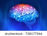 Human Brain On A Blue...