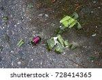 A Broken Glass Bottle Of Wine...
