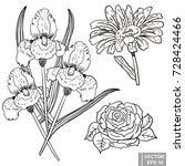 flower. rose  iris  chamomile.