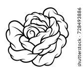 flower rose  black and white.