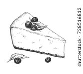 hand drawn cheesecake piece... | Shutterstock .eps vector #728516812