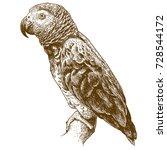 vector antique engraving... | Shutterstock .eps vector #728544172