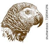 vector antique engraving... | Shutterstock .eps vector #728544196