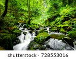a small river deep in the... | Shutterstock . vector #728553016