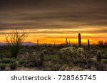 sunset at tucson mountain park... | Shutterstock . vector #728565745