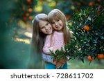girl kids on a orange farm... | Shutterstock . vector #728611702