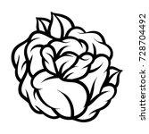 flower rose  black and white....   Shutterstock .eps vector #728704492