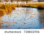 frozen pond in richmond park ... | Shutterstock . vector #728832556