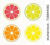 set of citrus vector | Shutterstock .eps vector #728844082