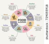 vector infographic template for ... | Shutterstock .eps vector #729055918
