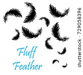 black feathers | Shutterstock .eps vector #729058396