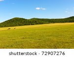 Grassland in Hulun Buir League of Inner-Mongolia, China - stock photo