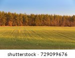 green yellow field near the... | Shutterstock . vector #729099676