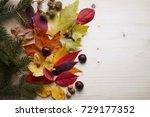 autumn leaves   Shutterstock . vector #729177352