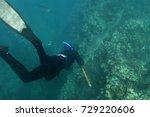 freediver approaching a... | Shutterstock . vector #729220606