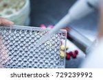 Small photo of Backgrounds of Science research with 96 wells microplate for laboratory testing.