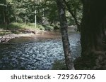 river flowing near a forest of... | Shutterstock . vector #729267706