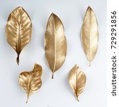 set of gold leaves.... | Shutterstock . vector #729291856