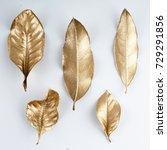 Set Of Gold Leaves....