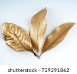 set of gold leaves.... | Shutterstock . vector #729291862