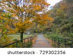 dakigaeri valley in autumn ... | Shutterstock . vector #729302356