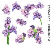 watercolor set of lilac...   Shutterstock . vector #729390328