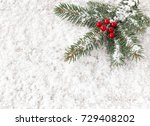 christmas tree fir twig with... | Shutterstock . vector #729408202