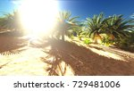 lush spectacular plants on... | Shutterstock . vector #729481006
