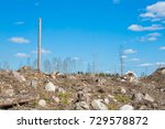 spring forest in sweden | Shutterstock . vector #729578872