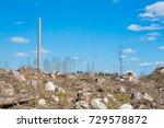 spring forest in sweden | Shutterstock . vector #729578872