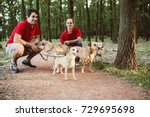Stock photo dog walkers with dogs enjoying in park 729695698