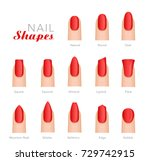 professional manicure different ... | Shutterstock .eps vector #729742915