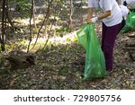 picking up trash in the forest. ... | Shutterstock . vector #729805756
