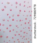 beautiful pink flowers... | Shutterstock . vector #729880978