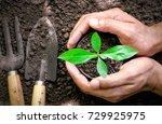 men hands are planting the... | Shutterstock . vector #729925975