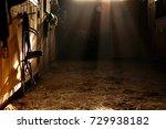 black leather bridle hangs in... | Shutterstock . vector #729938182