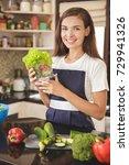 portrait of happy housewife... | Shutterstock . vector #729941326