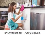 portrait of housewife cleaning... | Shutterstock . vector #729965686