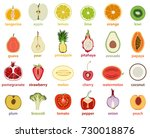 vector collection of isolated... | Shutterstock .eps vector #730018876